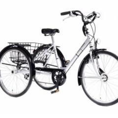Tribike Eco-trike De Rijcker - Ganda Orthopedica bvba