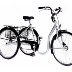 Tribike Eco-trike SU  De Rijcker - Ganda Orthopedica bvba