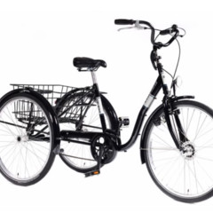Tribike Eco-trike S De Rijcker - Ganda Orthopedica bvba